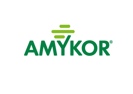 Amykor